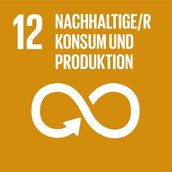 Ziele nachhaltige Entwicklung - Nachhaltiger Konsum und Produktion