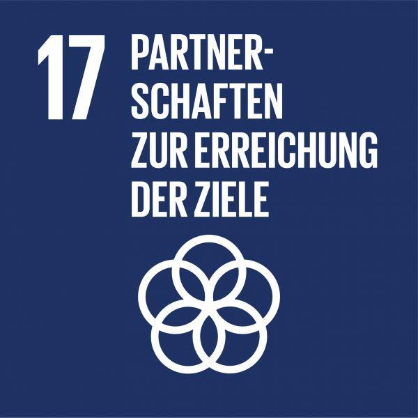 Ziele nachhaltige Entwicklung - Partnerschaften zur Erreichung der Ziele